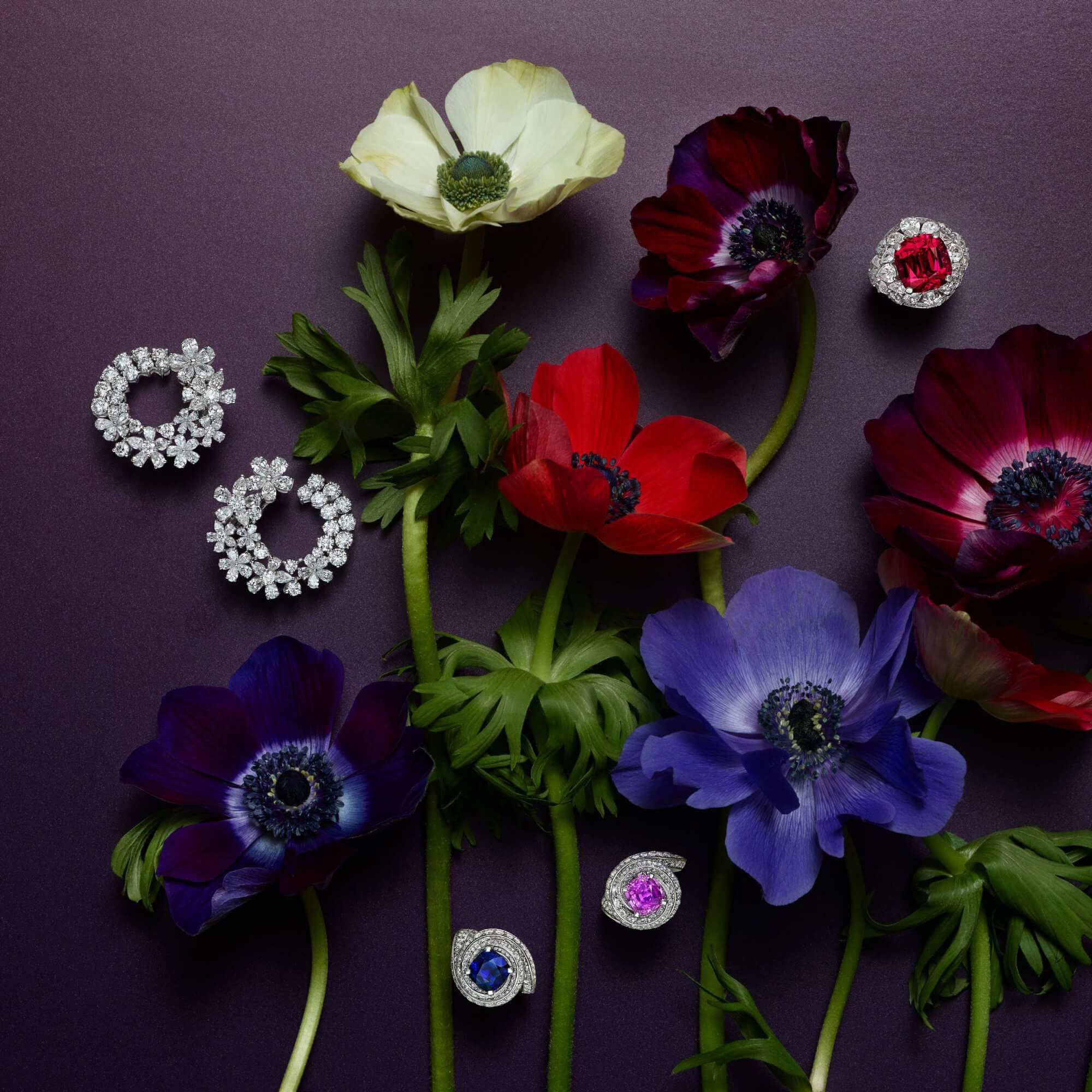 Graff coloured gemstones and diamond jewellery with flowers decorations