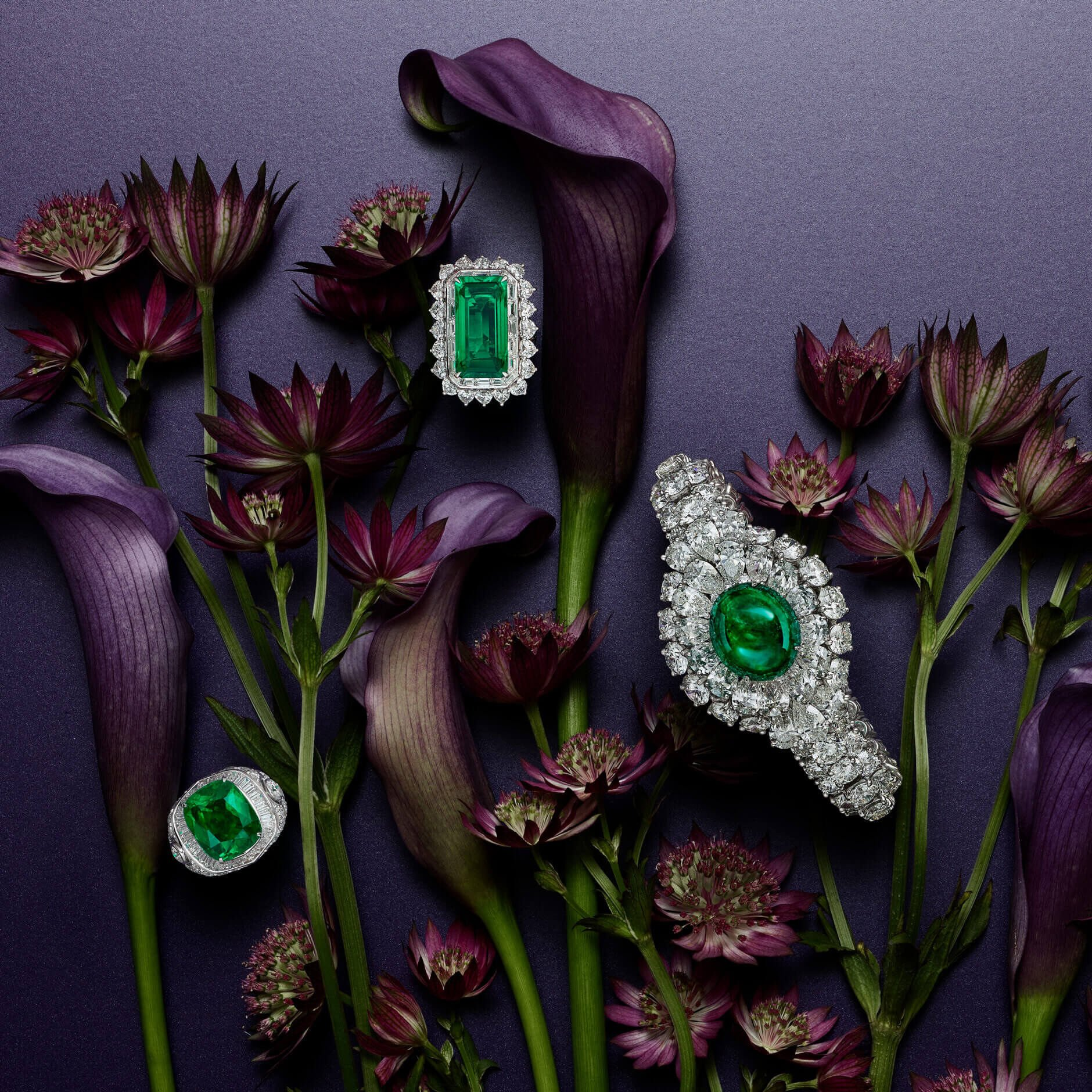 Graff emerald and diamond High jewellery with flowers decorations
