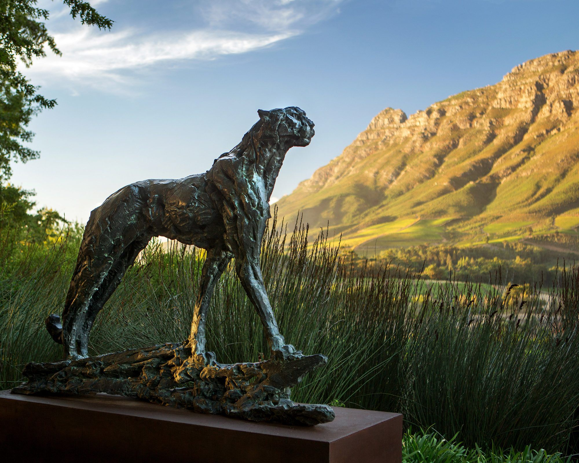 A sculpture in the garden of the Delaire Graff Estate in South Africa